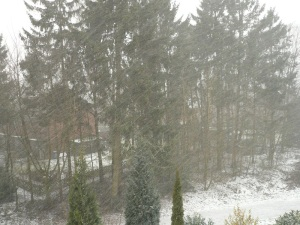 13.03.13 Schneefall1