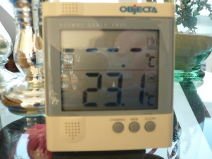15.03.13 Thermometer