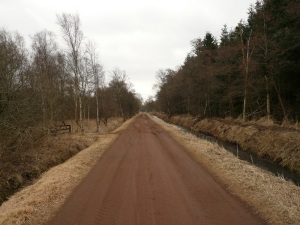 05.04.13 Feldweg