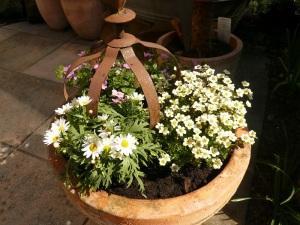 04.05.13 Blumen2