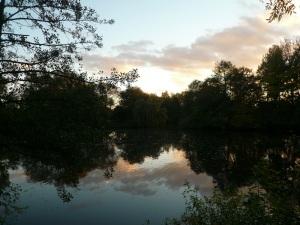 24.10.13 Bürgerfelder Teich