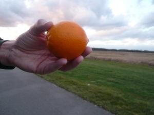 15.02.14 Apfelsine