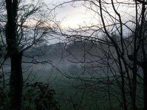 23.03.14 Nebel 2