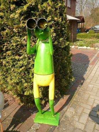 29.03.14 Frosch