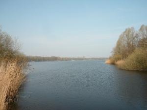 29.03.14 Gr Bornhorster See