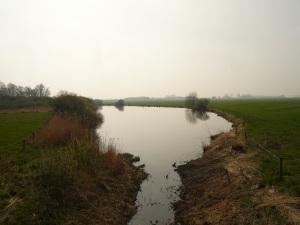 31.03.14 Gewässer