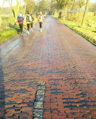 Klinkerstraße mit Granitmittelstreifen