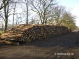 Noch mehr Holz!
