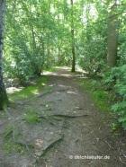 100 m Trail :-)