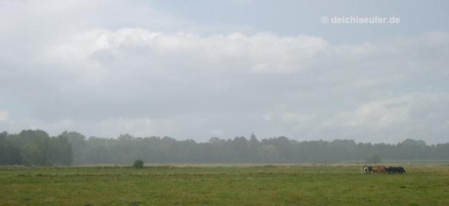 Regen über dem Land