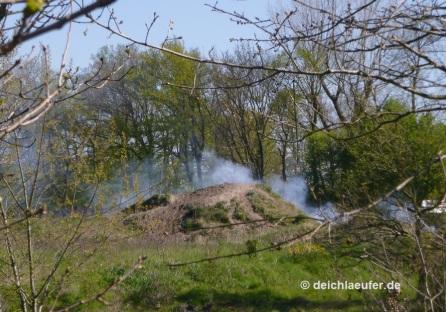 Es rauchen die Reste vom Bornhorster Osterfeuer