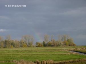 Unterm Regenbogen laufen ...