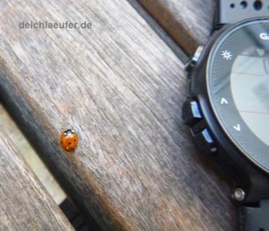 Nette Gesellschaft, während meine Uhr die Satelitten suchte :-)