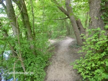 ... wunderbarer Trail