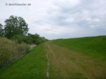 Grasbewachsene Strecke